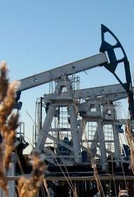 СП «Шелл-Газпром нефть» идет в Сибирь