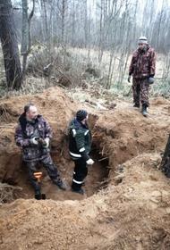 Захоронение нескольких  убитых нацистами детей обнаружили под Псковом