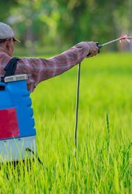 В России начнут контролировать ядовитые агрохимикаты