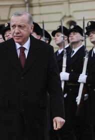 Эрдоган объяснился за фашистское приветствие, которое он крикнул в Киеве