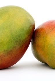 Джиму Керри надоело создавать карикатуры на политиков, теперь он рисует манго