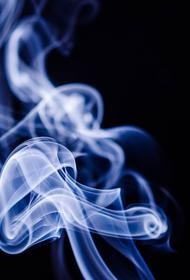 Профессор: электронные сигареты «хороший компромисс» обычным