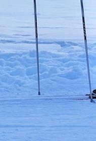 В Новой Москве лыжник провалился под лед