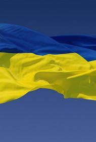 На Украине разочарованы новой санкционной процедурой Совета Европы