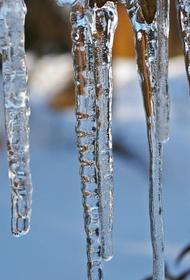 Апрель придет в середине февраля. Москвичам пообещали на следующей неделе весеннюю погоду