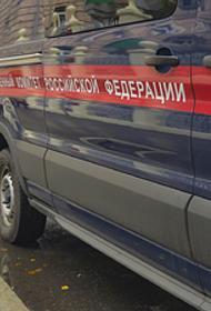 Бастрыкин поручил передать расследование дела гибели детей в Таиланде в центральный аппарат СКР