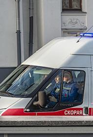 Восемь украинцев погибли в ДТП при столкновении микроавтобуса и фуры в Псковской области