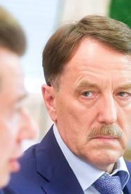 13 февраля Госдума выберет нового заместителя председателя