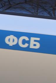 В Подмосковье задержан финансист ИГ*, собравший для террористов 25 млн рублей