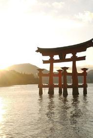 Министр иностранных дел Японии заявил о смене фазы переговоров с РФ