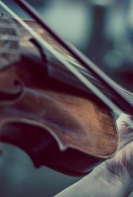 Музыкант играла на скрипке, пока хирурги оперировали её мозг