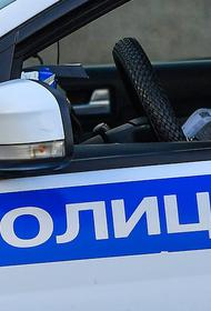 В Москве задержан подозреваемый в ограблении приемного сына Стаса Намина