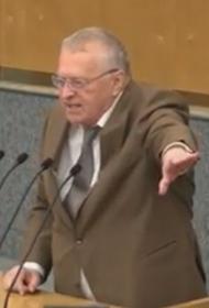 Жириновский предложил принять акт исторического примирения