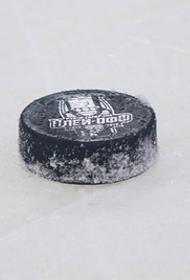 На детском  хоккейном  турнире в Тольятти произошла драка между игроками двух местных команд