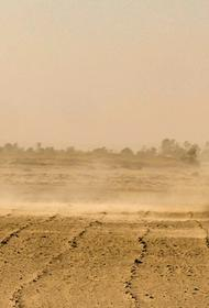 Канарские острова из-за песчаной бури не могут покинуть сотни туристов