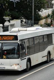 Бесплатный wi-fi появился в автобусах Сочи