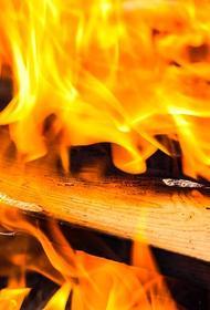 В Подмосковье потушили пожар на площади 7,2 тысячи квадратных метров