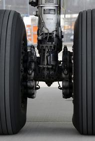 Летевший в Софию самолет совершил экстренную посадку в Шереметьево
