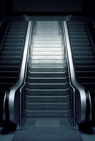Красногорск: ногу пятилетнего ребенка зажевал эскалатор в торговом центре