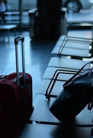 Эксперты назвали ключевые причины потери багажа в аэропортах