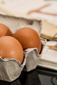 Ученые выяснили, сколько яиц можно съедать в день без вреда для здоровья