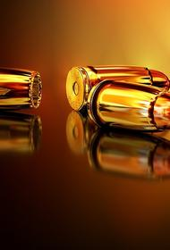 В России могут изменить правила выдачи лицензий на оружие, рассказали в Росгвардии