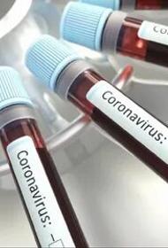 Следственный комитет Москвы начал проверку из-за фейков о коронавирусе