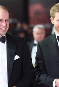 Королевский биограф: принцы Уильям и Гарри нарушили клятву, данную матери