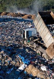 Россию от мусора избавят бомжи
