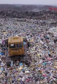 Пиар на мусорной куче