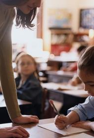 «Иначе получите двойки», родители рассказали, что детей в школе заставляют писать сочинение о поправках в Конституцию