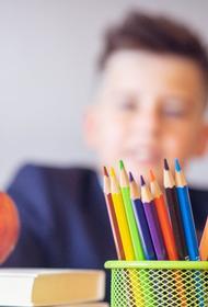 Минпросвещения РФ рекомендовало школам во всех регионах перейти на дистанционное обучение из-за коронавируса