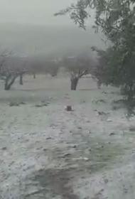 На Идлиб обрушился снег