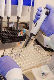 В Москве развернуто 9 лабораторий для анализа тестов на коронавирус