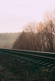 Какие поезда сообщением Россия - Белоруссия останутся после 23 марта