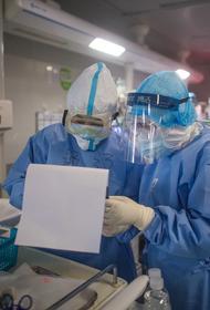 В Библии «нашли» пророчества о вспышке смертельно опасного коронавируса COVID-19