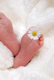 Новорождённую девочку похитили из роддома в Марий Эл