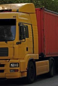 Мишустина просят поддержать национальных международных автоперевозчиков