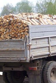 Пожилым москвичам помогут с отоплением дач дровами и углем