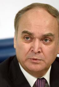 Антонов: американские СМИ лгут о неэффективности борьбы с коронавирусом в России