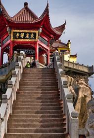 В Китае зафиксировали первый случай смерти от хантавируса