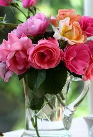 Как украсить интерьер цветами