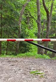 С 30 марта в Крыму  сроком на 21 день  закрыли посещение лесов