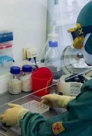 Говорят, российские медики нашли лекарство от COVID-19