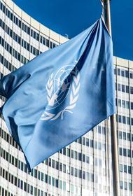 Украина заблокировала проект российской резолюции по борьбе с коронавирусом в ООН
