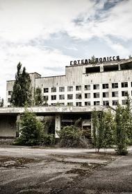 В чернобыльской зоне отчуждения горит лес