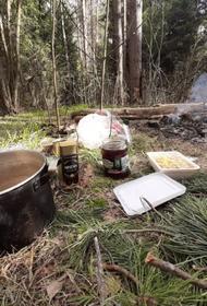 Раздобыть пропитание и обработать ночлег от клещей: как проходит самоизоляция в лесу