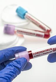 Впервые на Кубани больных коронавирусом доставили в больницу через суд