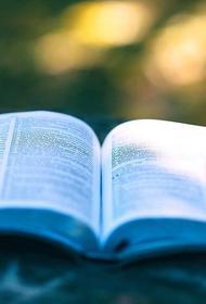 Торговлю книгами могут отнести к социальному предпринимательству