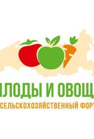 Ежегодный международный форум «Плоды и овощи России 2020» состоится в Краснодаре